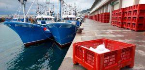 fondo-mariscos-dica-huelva-importacion-africa-002